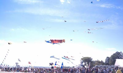 Kite Fest on Neshotah Park Beach